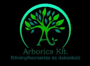 Arborica Kft. - Irodai növénygondozás, dísznövény telepítés, karbantartás és tervezés
